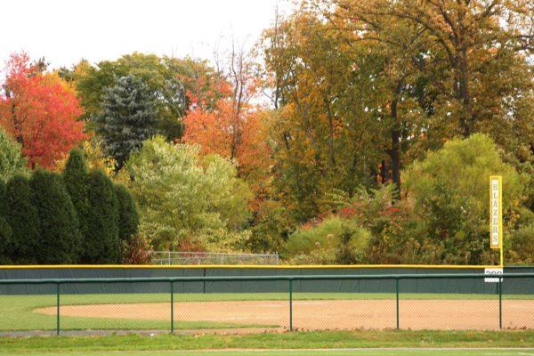 Condon Field